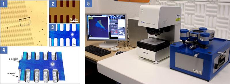 AFM & Confocal Laser Scanning Microscopy