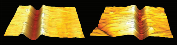 AFM images of scratches
