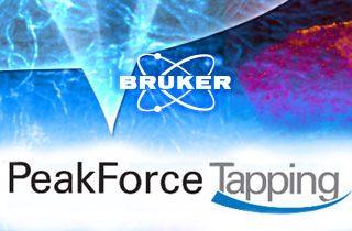 Bruker AFM: PeakForce Tapping