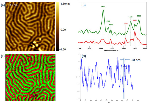 Block co-polymer Tapping AFM-IR