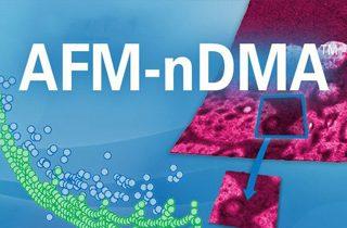 Bruker AFM-nDMA