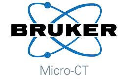 Bruker Micro-CT