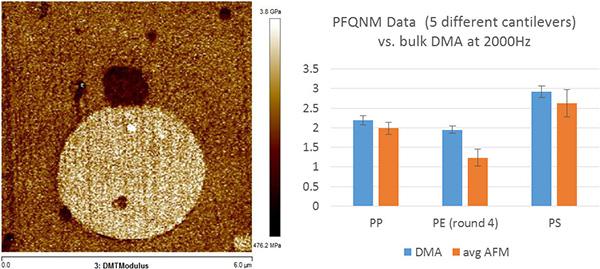 Bruker PeakForce QNM