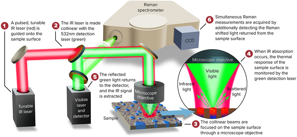 Simultaneous Infrared & Raman