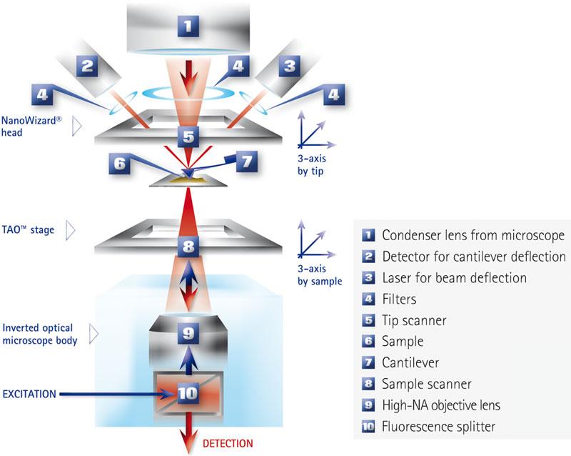 JPK NanoWizard NanoOptics Diagram