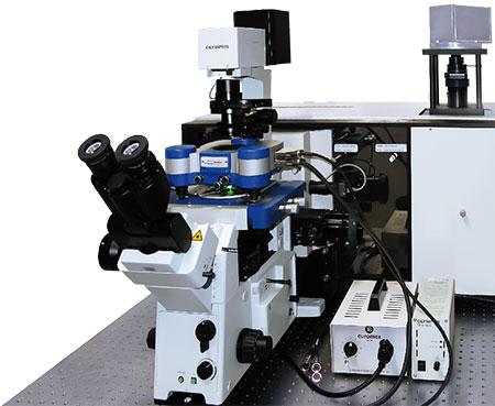 Bruker JPK NanoWizard NanoOptics AFM