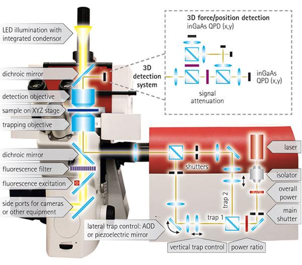 JPK Optical Tweezers
