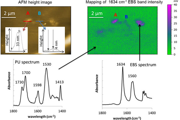 Polymer additive analysis using AFM-IR