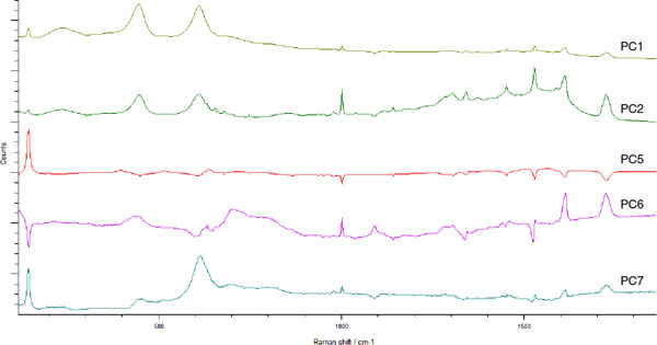 Raman Spectra of Coatings on Metal