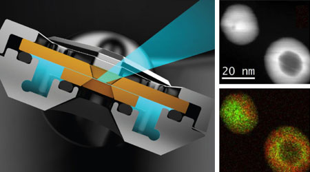 Protochips Atmosphere Gas Cell for TEM