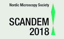 SCANDEM 2018