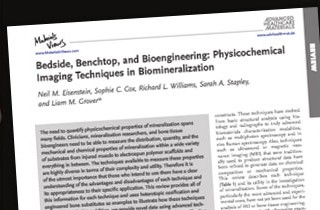 Biomineralisation in bone with Micro-XRF