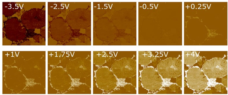 Imaging Lithium ion battery cathodes with AFM