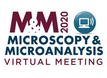 Microscopy and Microanalysis Virtual Meeting 2020