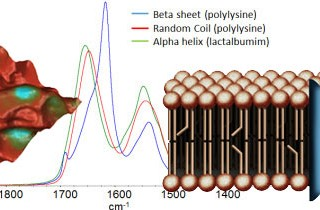 Nanoscale infrared spectroscopy webinar