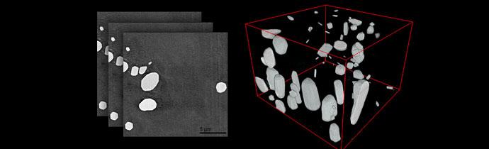 SBEM - Serial Block-Face Imaging