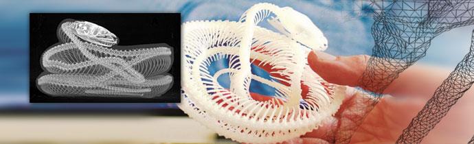 3D printing an x-ray micro-ct image